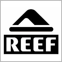 Reef Shoes at Hawley Lane Shoes, Connecticut